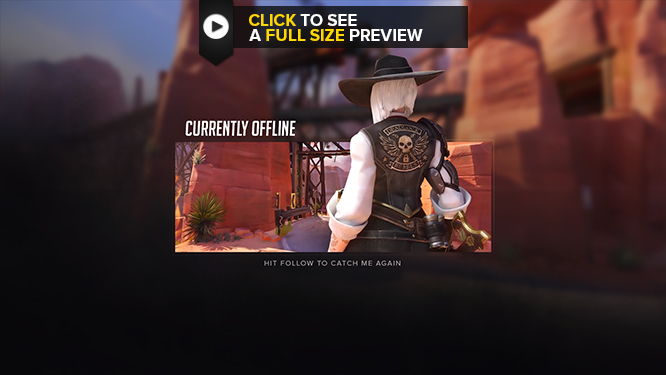 Static Offline Screen Ashe Themed